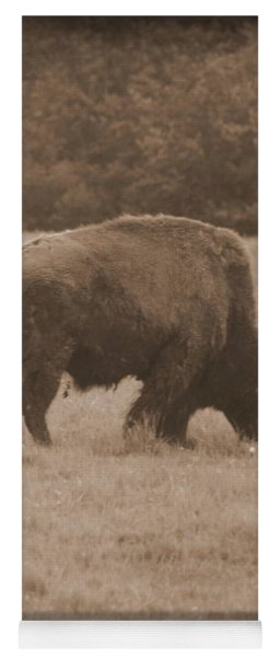 Roaming Bison Yoga Mat