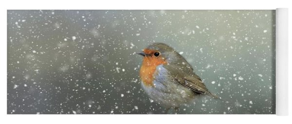 Robin In Winter Yoga Mat