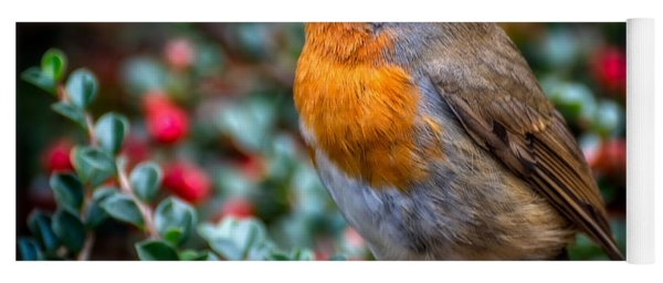 Yoga Mat featuring the photograph Robin Redbreast by Adrian Evans