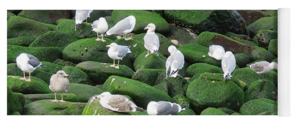 Rocks And Gulls Yoga Mat