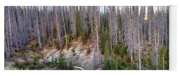 Rocky Mountain Wolf Creek Pass Panorama Yoga Mat