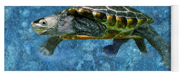 Rodney The Diamondback Terrapin Turtle Yoga Mat