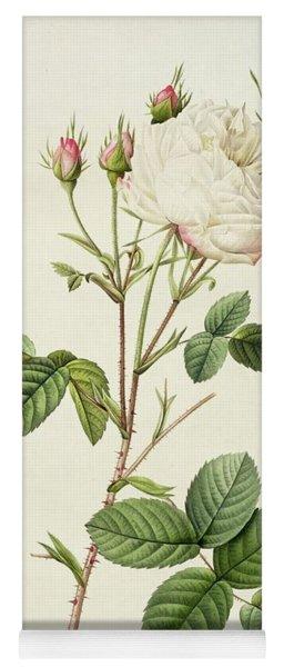 Rosa Centifolia Mutabilis Yoga Mat