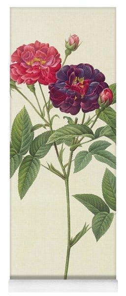 Rosa Gallica Purpurea Velutina Yoga Mat