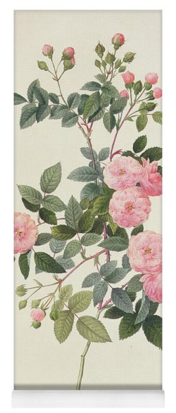 Rosa Multiflora Carnea Yoga Mat