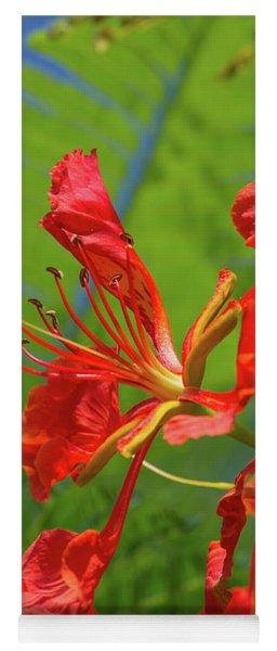Royal Poinciana Flower Yoga Mat