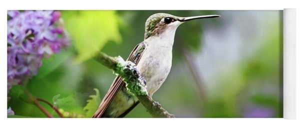 Ruby-throated Hummingbird-1 Yoga Mat