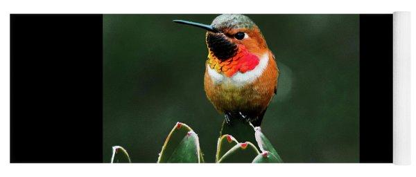 Rufous Hummimgbird Yoga Mat