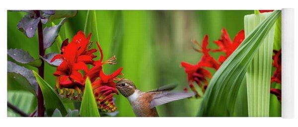 Rufous Hummingbird Feeding, No. 3 Yoga Mat