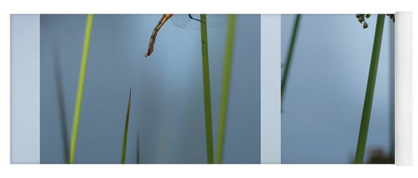 Rushes And Dragonfly Yoga Mat