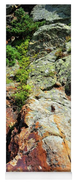 Rusty Rock Face Yoga Mat