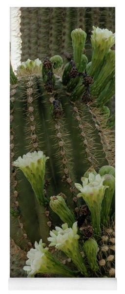 Saguaro Buds And Blooms Yoga Mat
