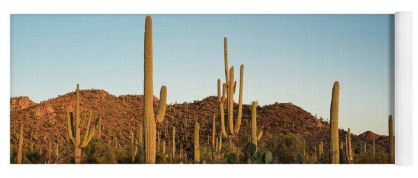 Saguaro National Park Desert Sunrise Panorama Yoga Mat
