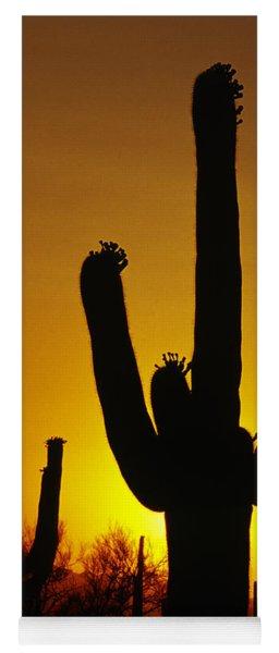 Saguaro Sunset Yoga Mat