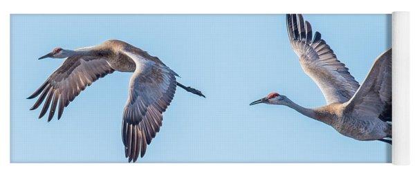 Sand Hill Cranes Flying Yoga Mat