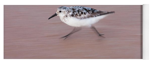 Sanderling On The Run Yoga Mat