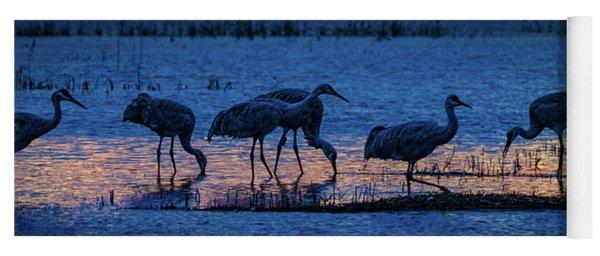 Sandhill Cranes At Twilight Yoga Mat