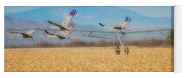 Sandhill Cranes In Flight Yoga Mat