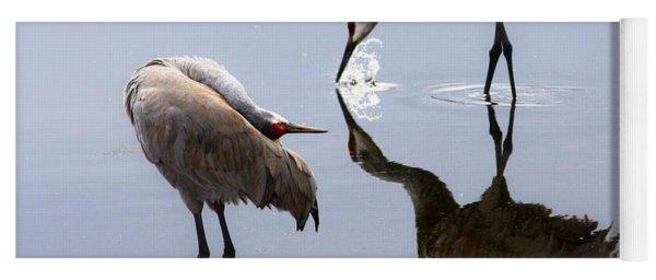 Sandhill Cranes Reflection On Pond Yoga Mat