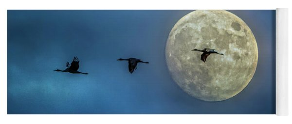 Yoga Mat featuring the photograph Sandhill Cranes With Full Moon by Patti Deters