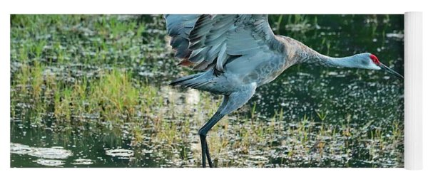 Sandhill Fly By Yoga Mat