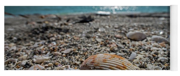 Sanibel Island Sea Shell Fort Myers Florida Yoga Mat