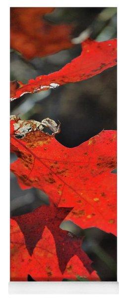 Scarlet Autumn Yoga Mat