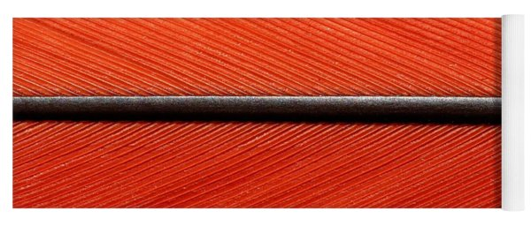 Scarlet Macaw Feather Yoga Mat