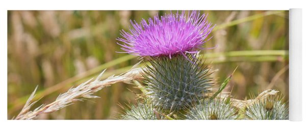 Scottish Thistle Yoga Mat