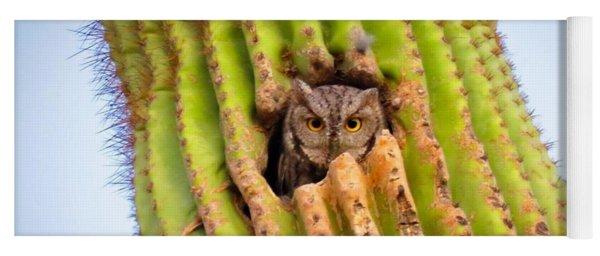 Screech Owl In Saguaro Yoga Mat