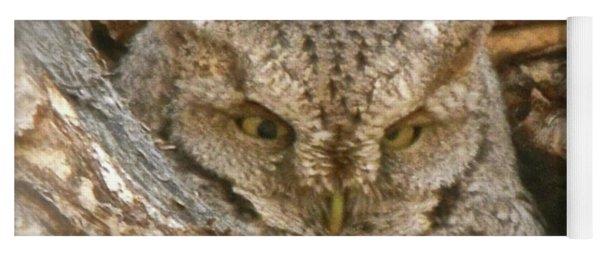 Screech Owl On Spring Creek Yoga Mat