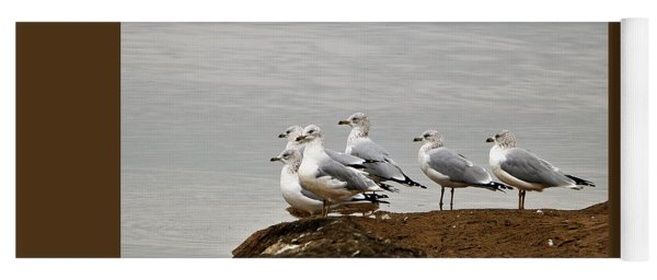 Sea Gulls On Rock Ledge Yoga Mat