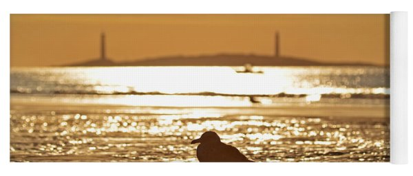 Seagull Admiring Thacher Island Gloucester Ma Good Harbor Beach Yoga Mat