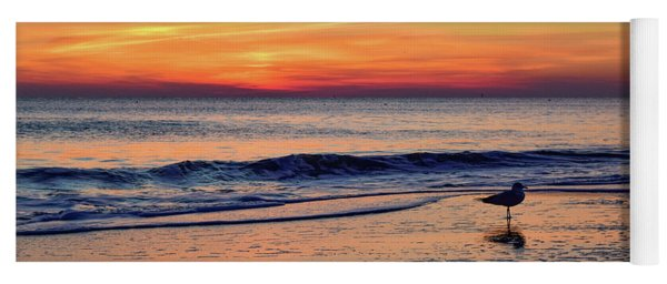 Yoga Mat featuring the photograph Seagull At Sunrise by Nicole Lloyd