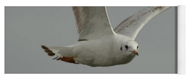 Seagull In Flight Against Gray Sky Vector Yoga Mat