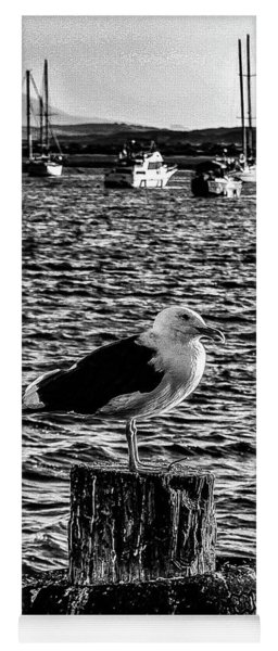 Seagull Perch, Black And White Yoga Mat