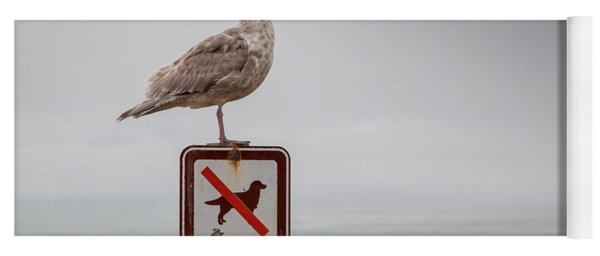 Seagull Standing On Sign And Looking At The Ocean Yoga Mat