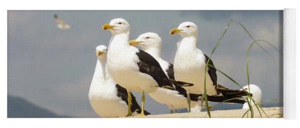 Seagulls At The Beach Yoga Mat