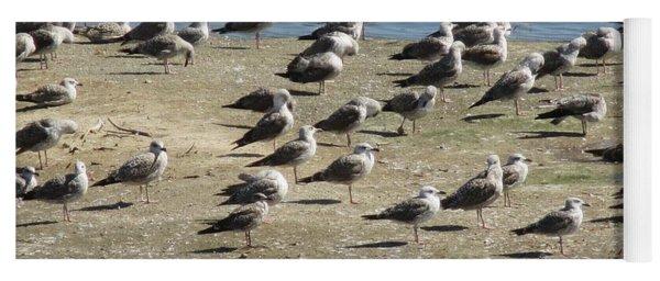 Seagulls Yoga Mat