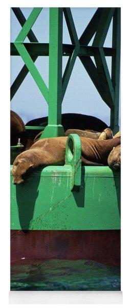 Seals On Channel Marker Yoga Mat