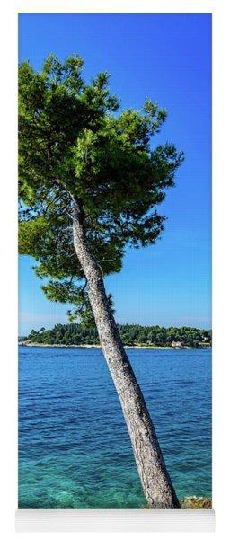 Seaside Leaning Tree In Rovinj, Croatia Yoga Mat