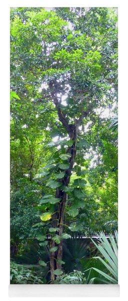 Secret Bridge In The Tropical Garden Yoga Mat