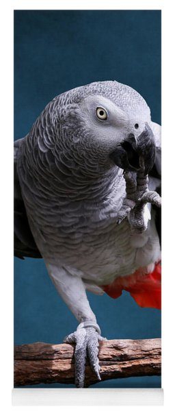 Secretive Gray Parrot Yoga Mat