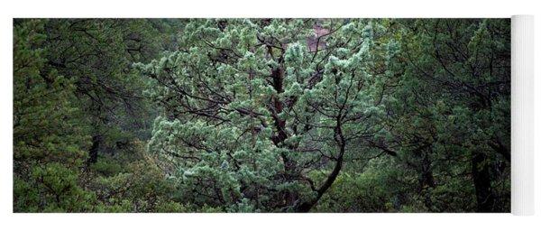 Sedona Tree #1 Yoga Mat