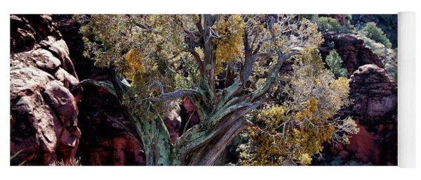 Sedona Tree #2 Yoga Mat
