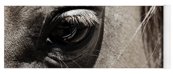 Stillness In The Eye Of A Horse Yoga Mat