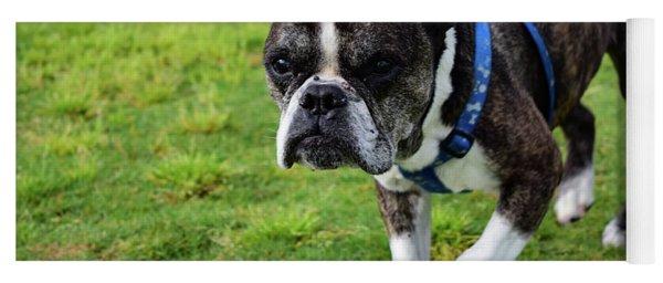Leroy The Senior Bulldog Yoga Mat