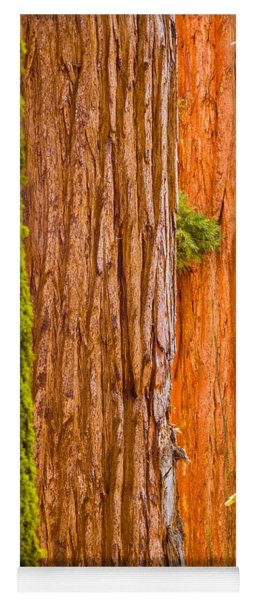 Sequoia Abstract Yoga Mat