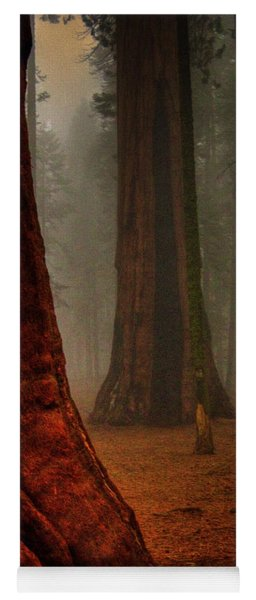 Sequoias In The Clouds Yoga Mat