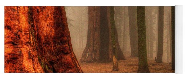 Sequoias Touching The Clouds Yoga Mat
